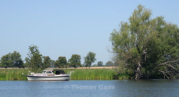 Landschaft an der Havel