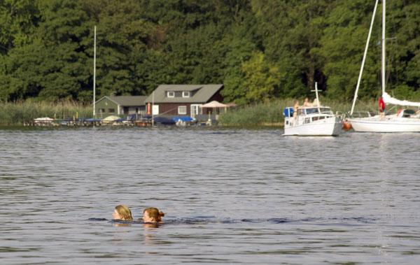 Zwei Schwimmerinnen beim Durchqueren des Tegeler Sees